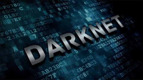 darknet-image-735